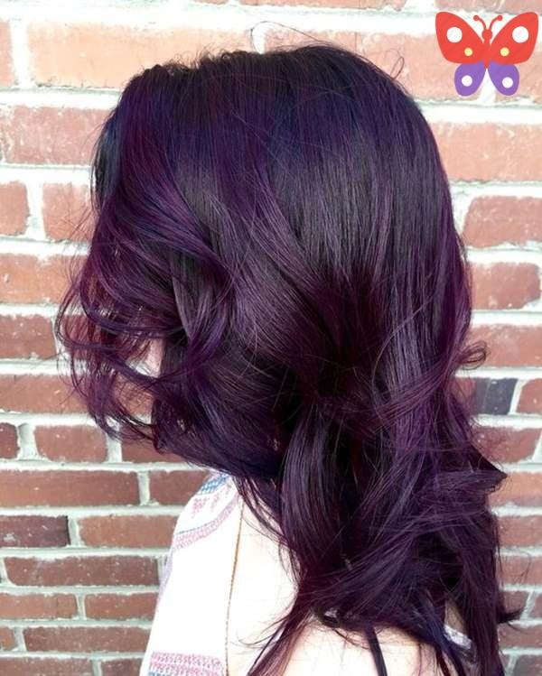 viole-siyah-sac-renkleri